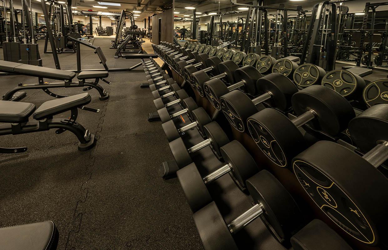 fitness-center-zürich-halle41-freihantelbereich-3